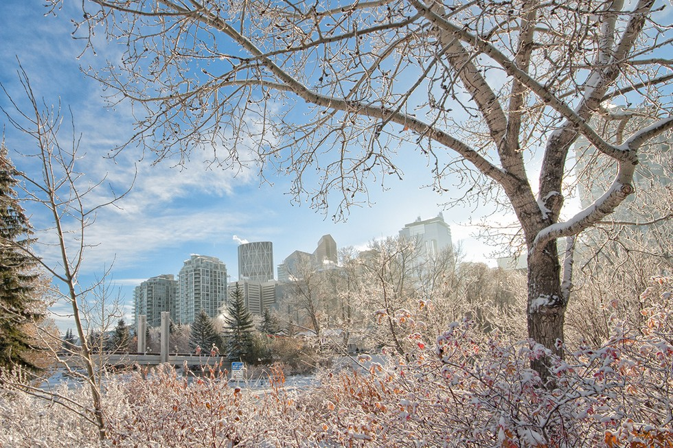 Calgary, Alberta is Home to the 1988 Winter Olympics