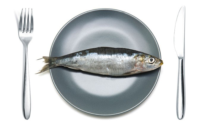 Is eating mercury laden fish so bad seeker for Do all fish have mercury
