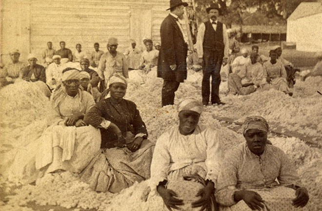 southern cotton and slave industry The civil war cotton shock didn't just shake the american economy  cotton  cultivators, the enslaved workers of the american south, had attained their   slave plantations were fundamentally different sites of production than.