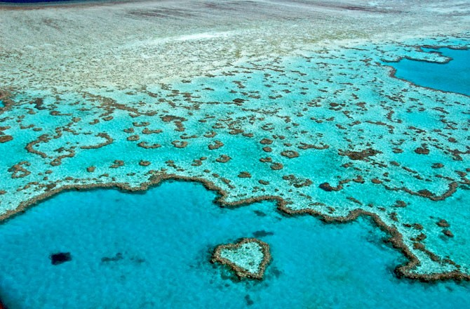 descriptive essay great barrier reef Great barrier reef essayswhat's wrong with the great barrier reef we all know that we have problems with our environment due to such things as pollution, the.