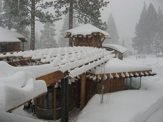 The Best Ski Season Pass Deals for California Snow Bunnies