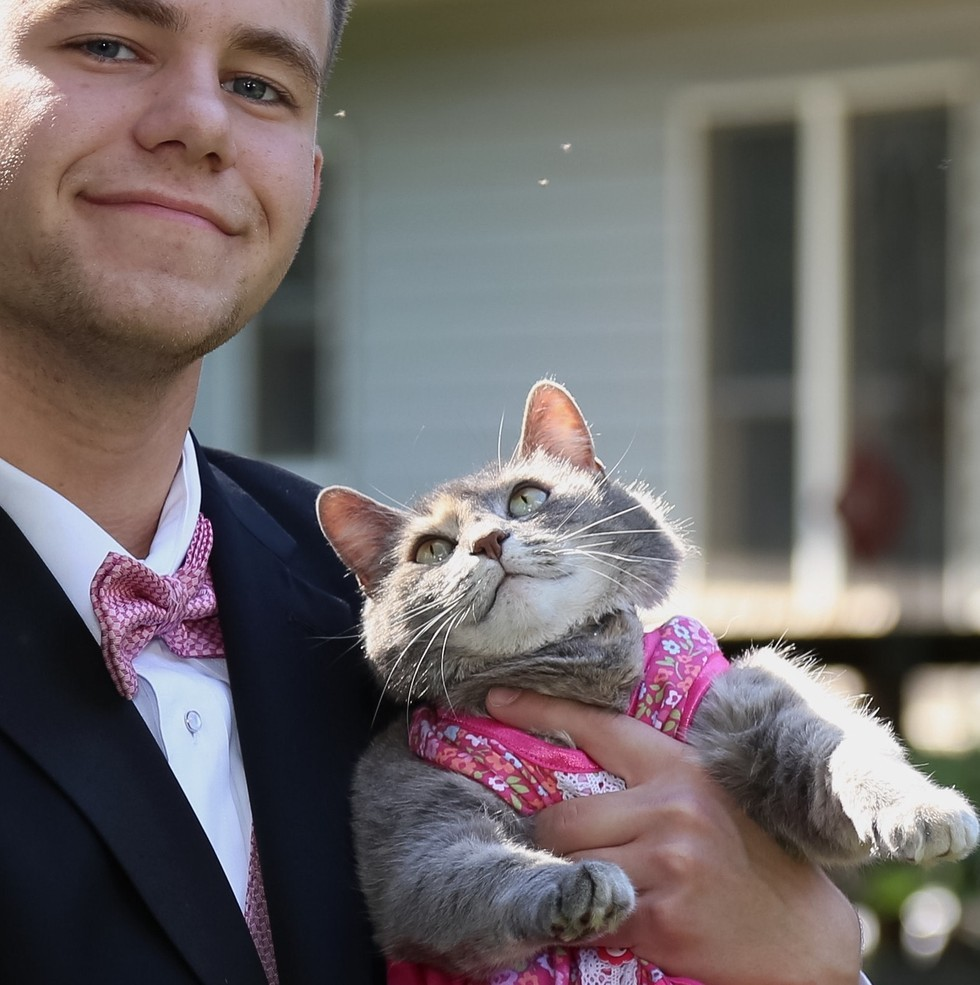 This Guy Couldnt Find A Date To School Prom So He Took His Cat - Guy gives up finding prom date and decides to take his cat instead