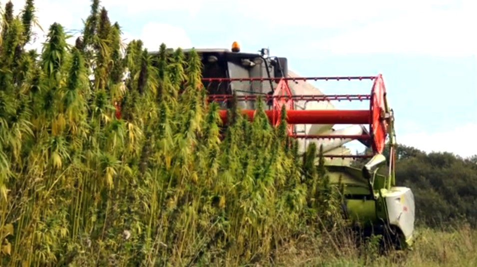 legislative history industrial hemp farming act A bipartisan effort to exempt industrial hemp from the controlled substances act might just have the political momentum to pass.