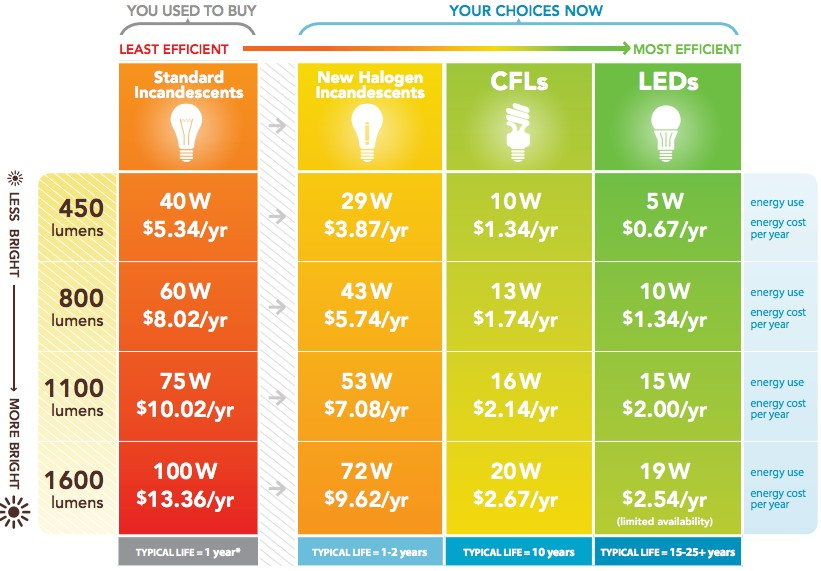 Guide to buying energy efficient light bulbs as daylight for Led bulb buying guide