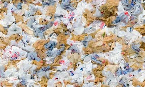 Ban on plastic bags essay   Dissertation