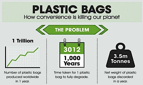 plastic bags are hazardous for the environment essay Plastic bag bans are bad for the environment by angela logomasini the past several years have seen a groundswell of plastic bans: bad for the environment.