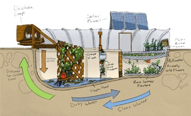 3 Creative Solutions Emerging In Urban Farming Ecowatch