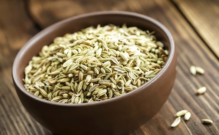 6 Incredible Health Benefits Of Fennel - Ecowatch-2835