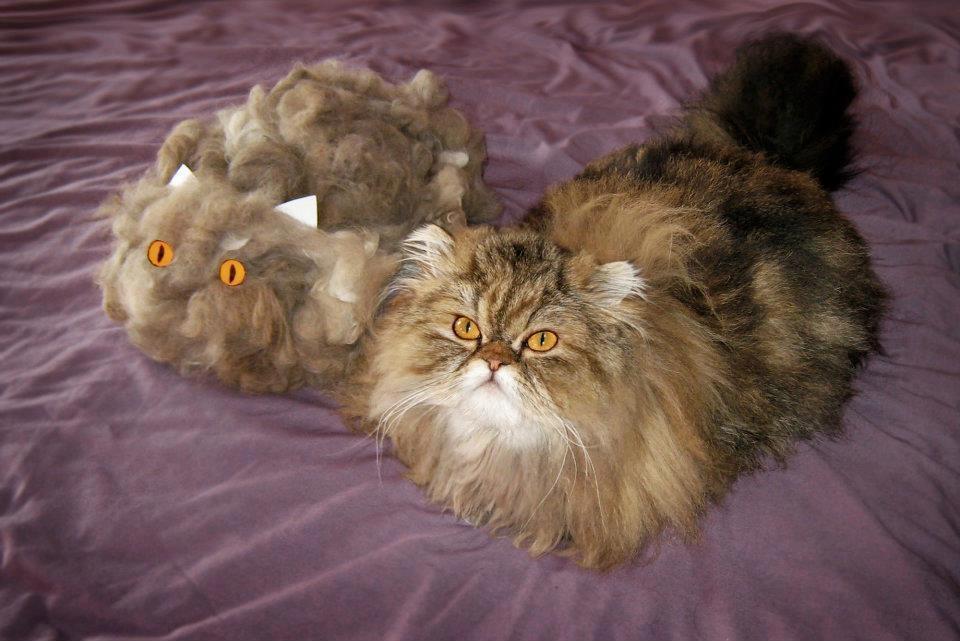 Furminator Bad For Long Hair Cats