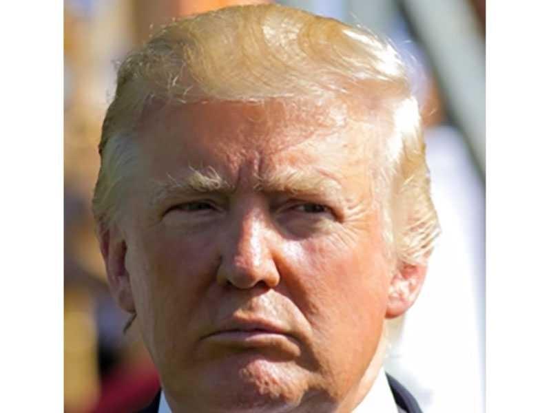 Donald Trump Hair Mystery Combover Toupee Transplant