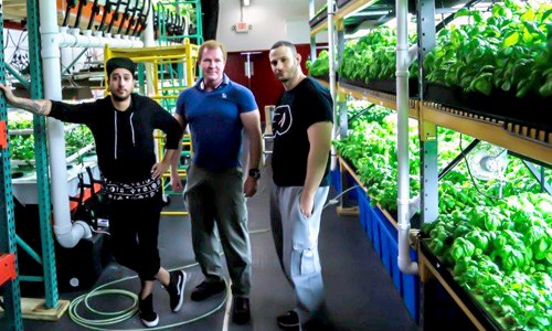 Will Philadelphia Become the Vertical Farming Capital of the World?