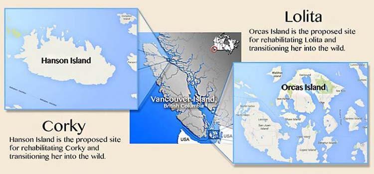 maps google wikipedia center map illustration marc fusco