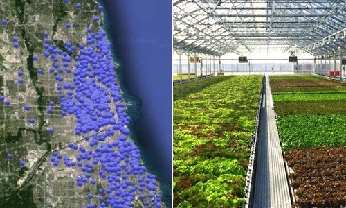 This City Is Home to 820 Urban Farms and Quickly Becoming America's Urban Ag Capital
