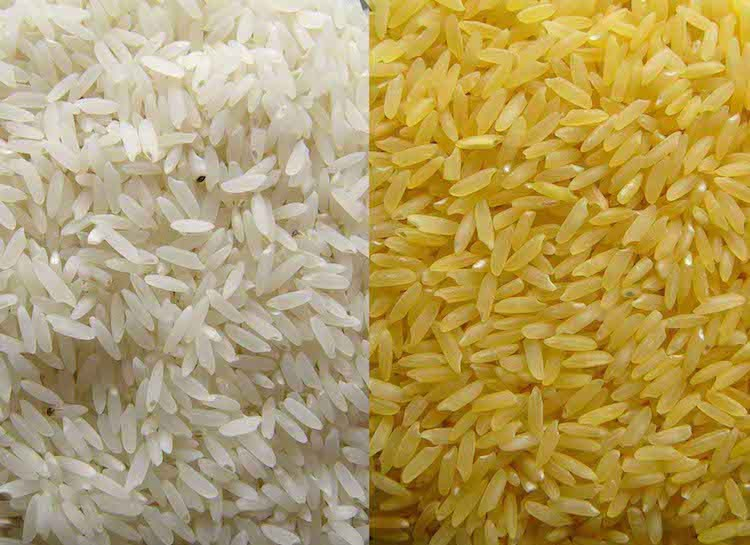 asian-rice-crisis-starts-to-bite-very-young-looking-girls-faces-fucked