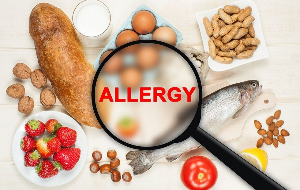What Is A Common Food Allergy For Dogs
