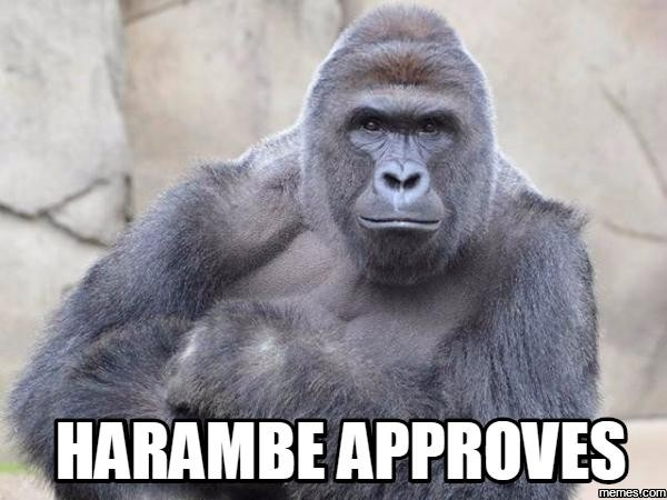 980x cincinnati zoo really sick of your harambe signs and memes