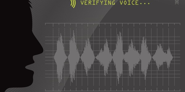 ​Auditory Verification