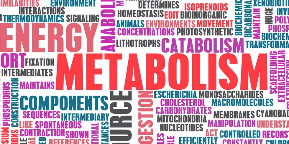 6 ways you might be slowing your metabolism - Electricity bill highcommon mistakes might making ...