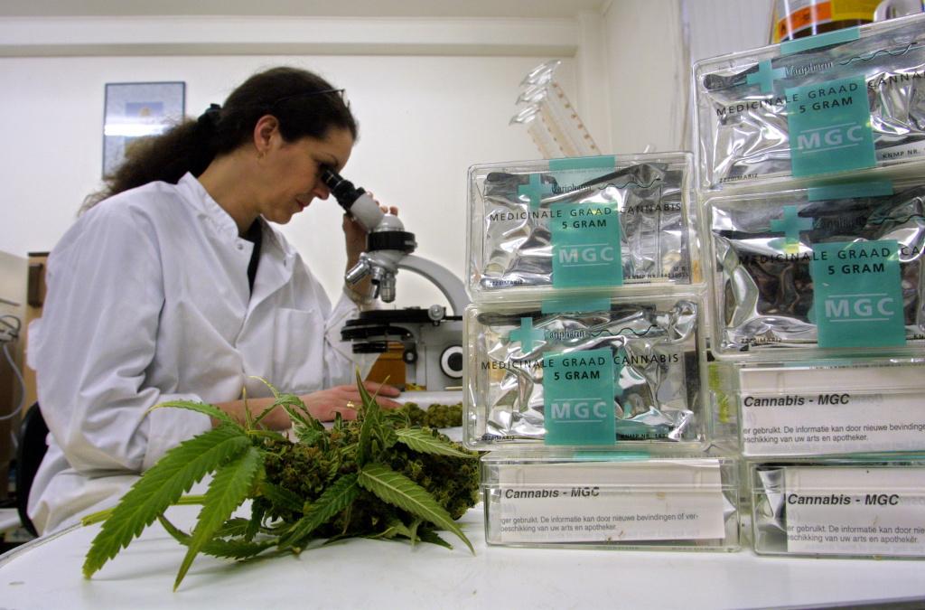 The University of Florida Just Received $1 Million To Study Marijuana