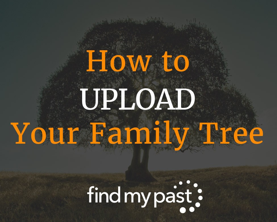 How to Upload Your Family Tree