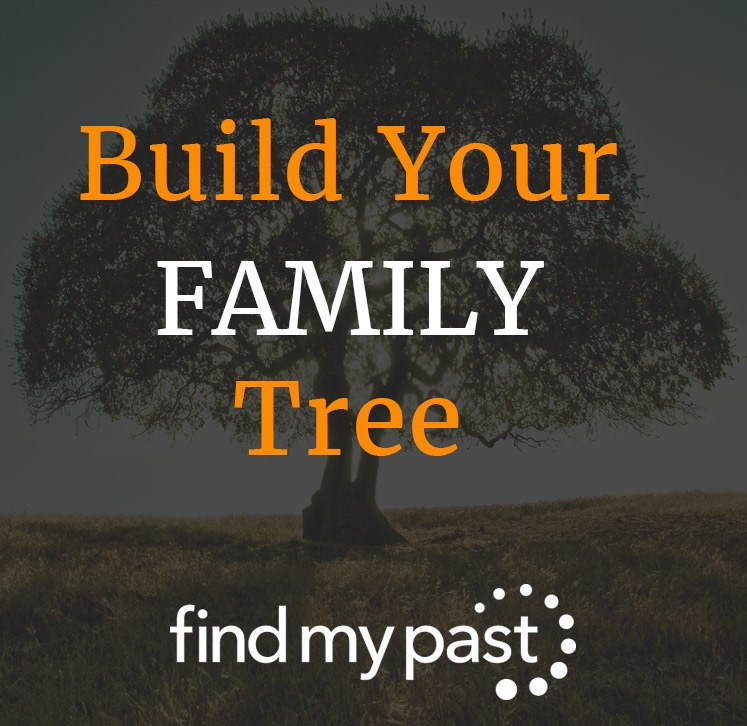 Build Your Family Tree