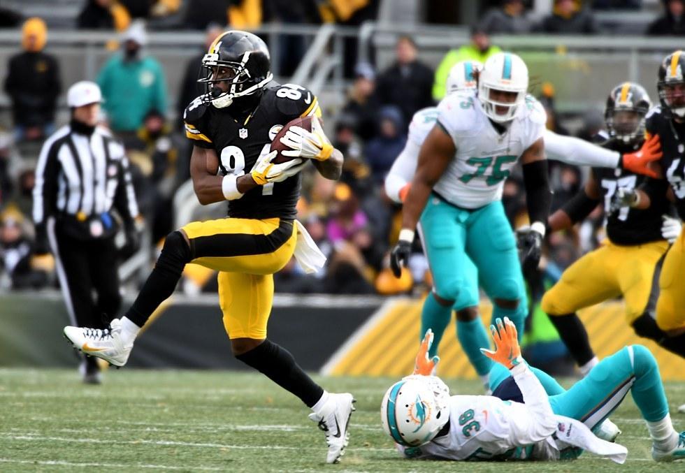 AFC playoffs (wild-card round): Steelers 30, Dolphins 12