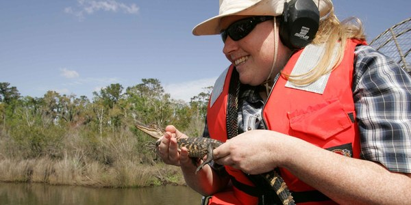 Airboat Tours of The Bayou