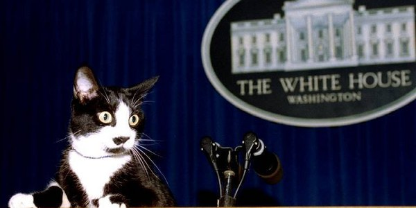 this se-cat-ary of the press... get it?!