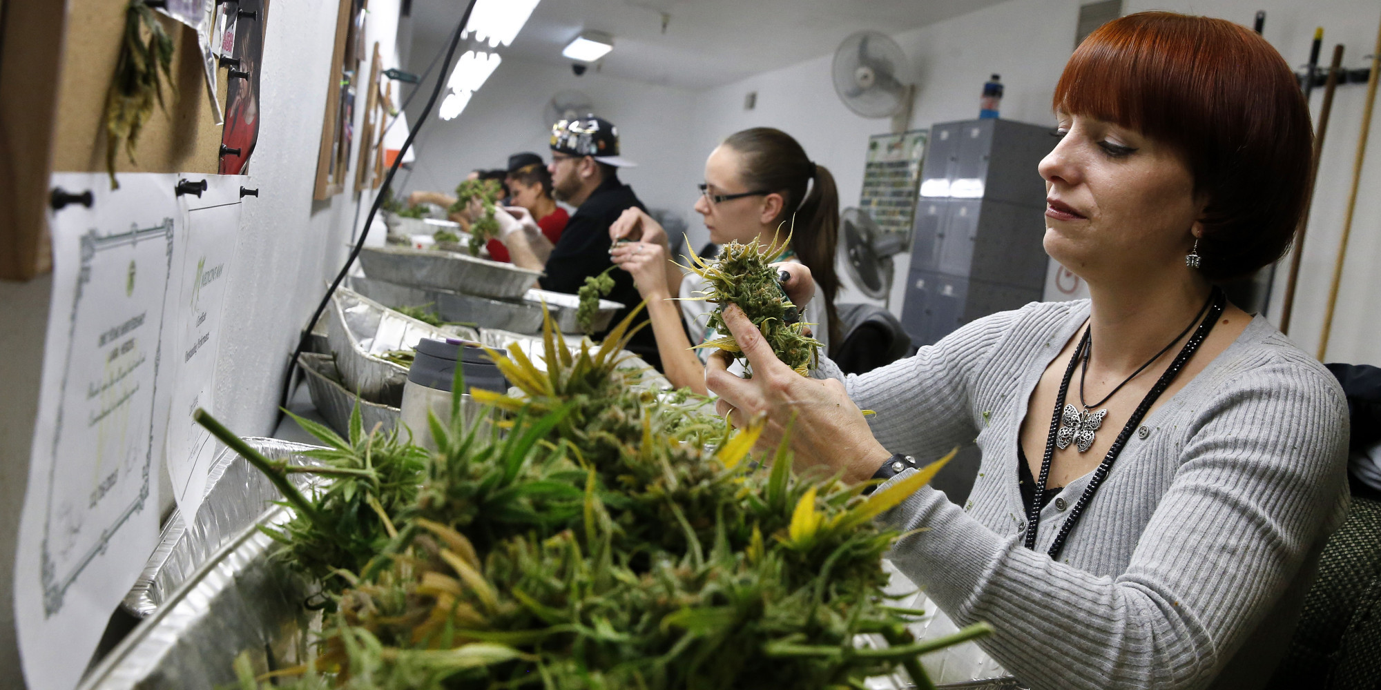 Colorado's Cannabis Industry Is Now Bigger Than Some Countries' Economy