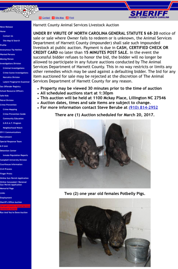 Advertisement for potbellied pigs being sold at auction