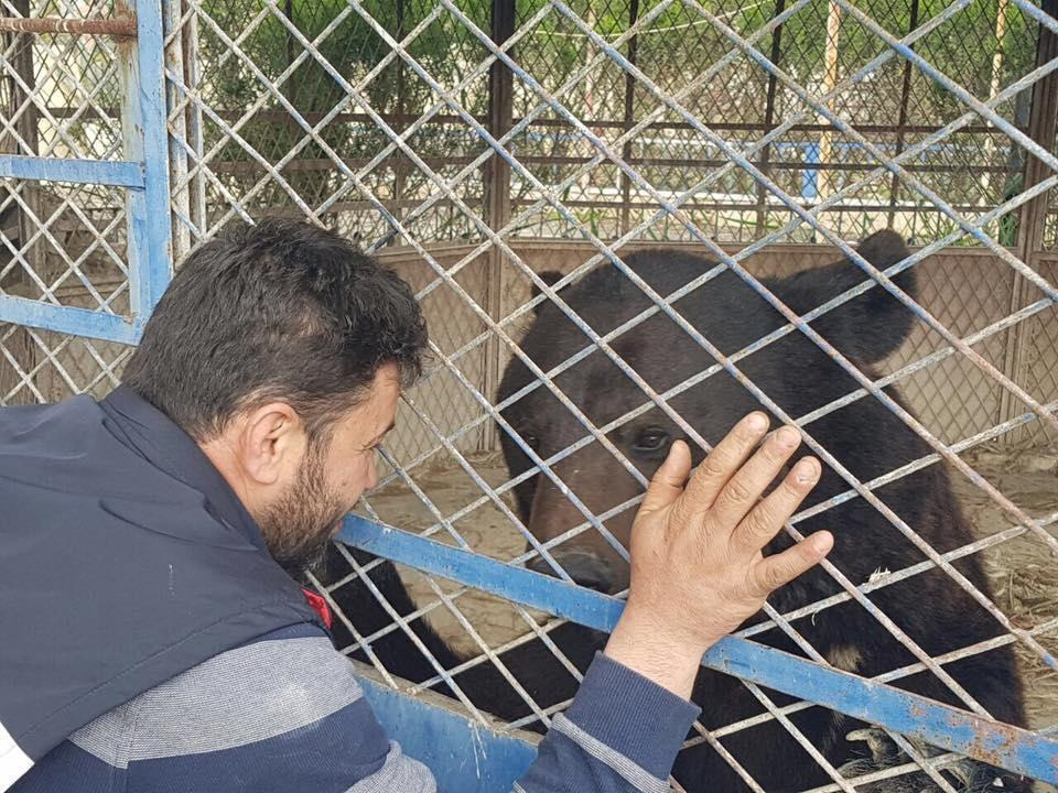 'Cat man' of Aleppo visits starving bear in zoo