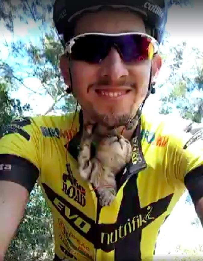 Kitten Can t Stop Kissing Cyclist Who Saved His Life... - Love Meow aaa144d96