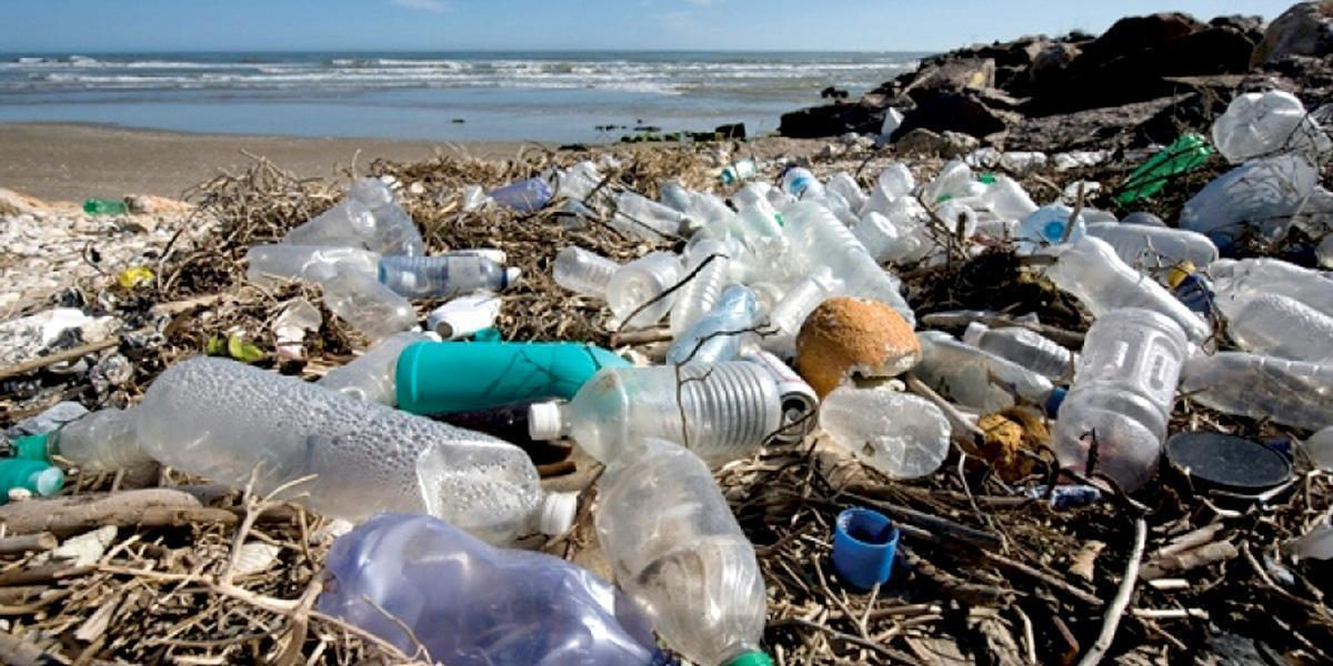 photo image Prince Charles: It's Time to Solve the 'Human Disaster' of Plastics in the World's Oceans
