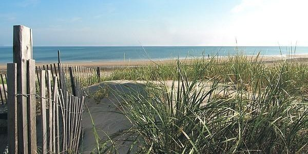 No. 6: Coast Guard Beach, Cape Cod, Mass.